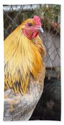 Hen Pecked Beach Towel