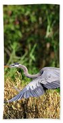 Heron Flying Along The River Bank Beach Towel