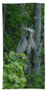 Heron On A Limb Beach Towel