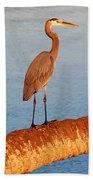 Heron On Palm Beach Towel