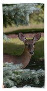 Hi Deer Beach Towel