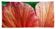 Hibiscus Fandango Beach Towel