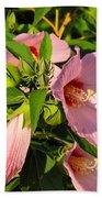 Hibiscus In Summer Beach Sheet