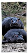 Hippos In Love Beach Towel