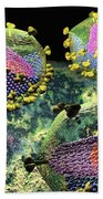 Hiv Three Sectioned Virions On Black Beach Towel