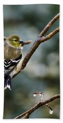 Ho Hum Bird In An Ice Storm Beach Towel