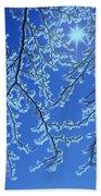 Hoar Frost Beach Towel