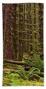 Hoh Rainforest Beach Towel