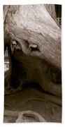 Hollow Tree Beach Towel
