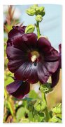 Hollyhock 7193 Beach Towel