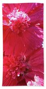 Hollyhock Duet Beach Towel