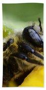 Honey Bee 2 Beach Towel