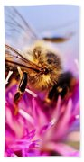 Honey Bee  Beach Towel by Elena Elisseeva