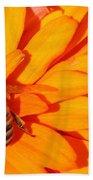 Honeybee On An Orange Zinnia Beach Towel