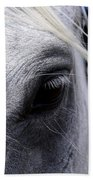 Horse At Mule Day Benson Beach Towel