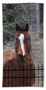 Horse Behind The Fence Beach Towel