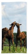 Horse Foul Play II Beach Towel