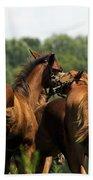 Horse Foul Play IIi Beach Towel
