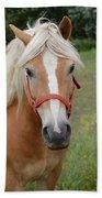 Horse Friend Birthday Beach Towel