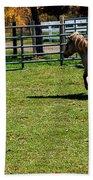 Horse Jump Beach Towel