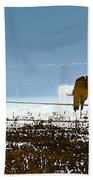 Horse Pasture Revdkblue Beach Towel