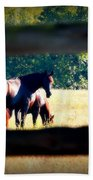 Horse Photography Beach Towel