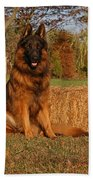 Hoss In Autumn II Beach Towel