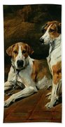 Hounds In A Stable Interior Beach Towel