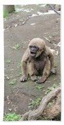 Howling Baby Monkey Beach Towel