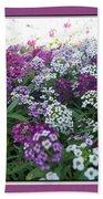 Hues Of Purple Phlox Beach Towel