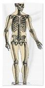 Human Skeleton Beach Towel