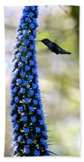 Hummingbird And Flower Beach Towel