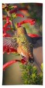 Hummingbird In Flight 1 Beach Towel