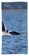 Hump Back Whale In Alaska Beach Towel