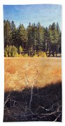I Roam Beach Towel by Laurie Search
