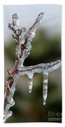 Icy Branch-7529 Beach Towel