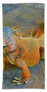 Iguana At The Restaurant  Beach Towel