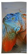 Iguana Close-up Beach Towel
