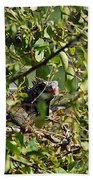 Iguana Hiding In The Bushes Beach Towel