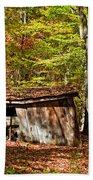 In Autumn Woods Beach Towel by Steve Harrington
