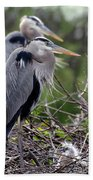 In The Nest Beach Towel