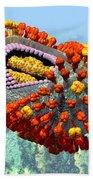 Influenza Structure On Blue Beach Towel
