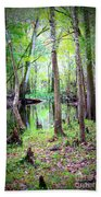 Into The Swamp Beach Towel