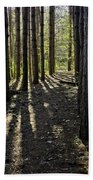 Into The Woods Spnc Michigan Beach Towel