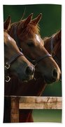 Ireland Thoroughbred Horses Beach Towel