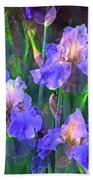 Iris 51 Beach Towel by Pamela Cooper