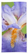 Iris Full Bloom Beach Towel