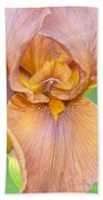 Iris In Gold  Beach Towel