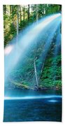 Iron Creek Falls From The Side  Beach Towel