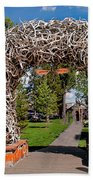 Jackson Hole Beach Towel by Robert Bales